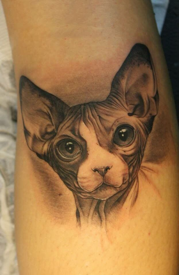 The most loved cat tattoos ideas ever! 29