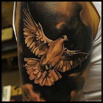 A guide on best of the dove tattoos ideas 5