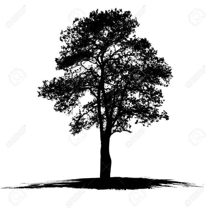 Top 10 And Best ideas for having Oak Tree Designed Tattoos 20