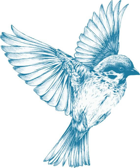 Top sparrow tattoos for a cool and stylish look 3