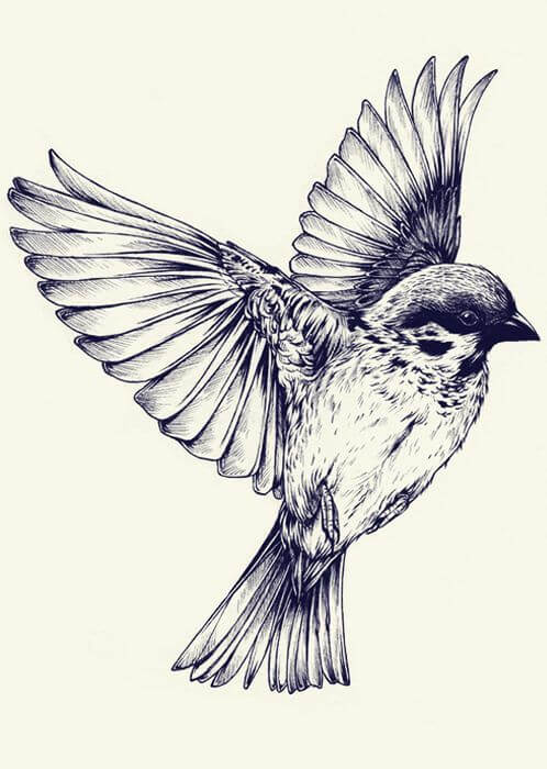 Top sparrow tattoos for a cool and stylish look 9