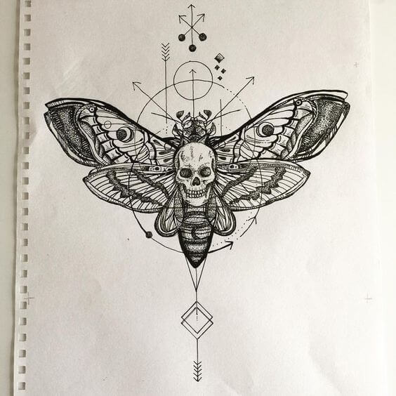 moths tattoo design
