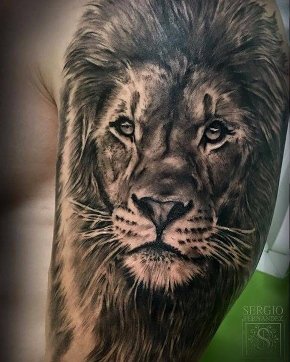 Top 31 Lion Tattoos - In diferent cultures 2